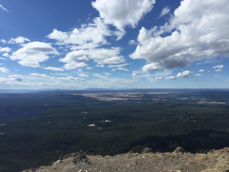Getting higher up on Mt. Washburn trail!