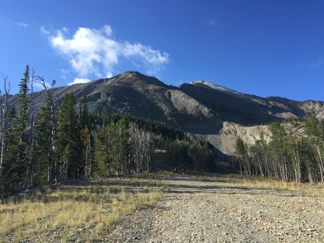 Looking up to Headwater Ridge, the first major technical climb about 13 miles into the race.